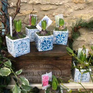 We have some hyacinth pots on our garden gate stand today. They make great little gifts #fairford #hyacinthpots #hyacinths #christmasgifts #gardengatesales #smallbusiness #cotswolds