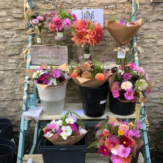 It's our charity flower sale today in aid of @shinebrightsupport 💛They're selling quickly!! #charityflowersale #gardengatesales #fairford #childhoodcancerawarenessmonth #glowgold