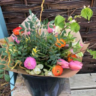 Spring flowers, grown in the cotswolds, delivered to your door #ranuculus #tulips #tulipbiglove #orangeandpink #fieldtovase #freshcutflowers #localdelivery #lowcarbonfootprint #zeroplastic #sustainablygrown #fairford #lechlade