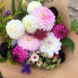Details of our flower subscriptions coming very soon!! Ruth @tcgcutflowers and I have been busy working on our subscription options and we hope there will be something for everyone 🌸💐🌺 #flowersubscriptions #britishgrownflowers #trulyseasonalflowers #growingwiththeseasons #flowerfarmer #ethicalflowers #sustainablygrown #chemicalfreeflowers #locallygrown #localdelivery #noplasticwrap #growninthecotswolds #cotswolds #fairford #smallbusiness #shoplocal #zeroairmilesflowers #fieldtovase #grownbyme