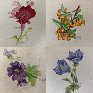 Every year, for my birthday (in October) my Auntie in Holland paints me a birthday card. I've kept them all over the years so I thought I would share a few of them today #floralart #handpainted #handpaintedbirthdaycard #paintedbymariannedebree #leiderdorp #netherlands