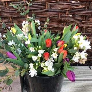 Remember to order your bunch of British grown spring flowers for local delivery on Wednesday next week! #britishgrownflowers #springflowers #localdelivery #fairford #lechlade #springbunches #zeroairmiles #zeroplastic #wrappedinpaper #cotswolds #smallbusiness